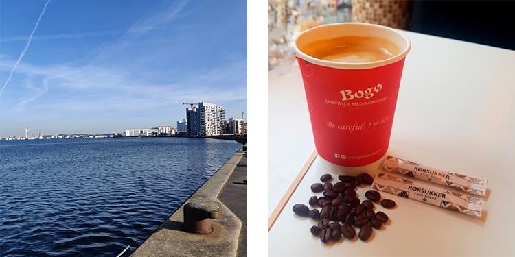 Den perfekte dag - havnen og bogø